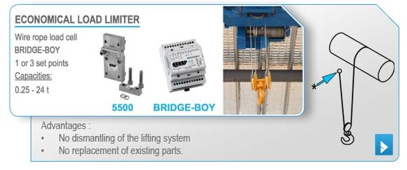 Economical load limiter for overhead crane - SENSY